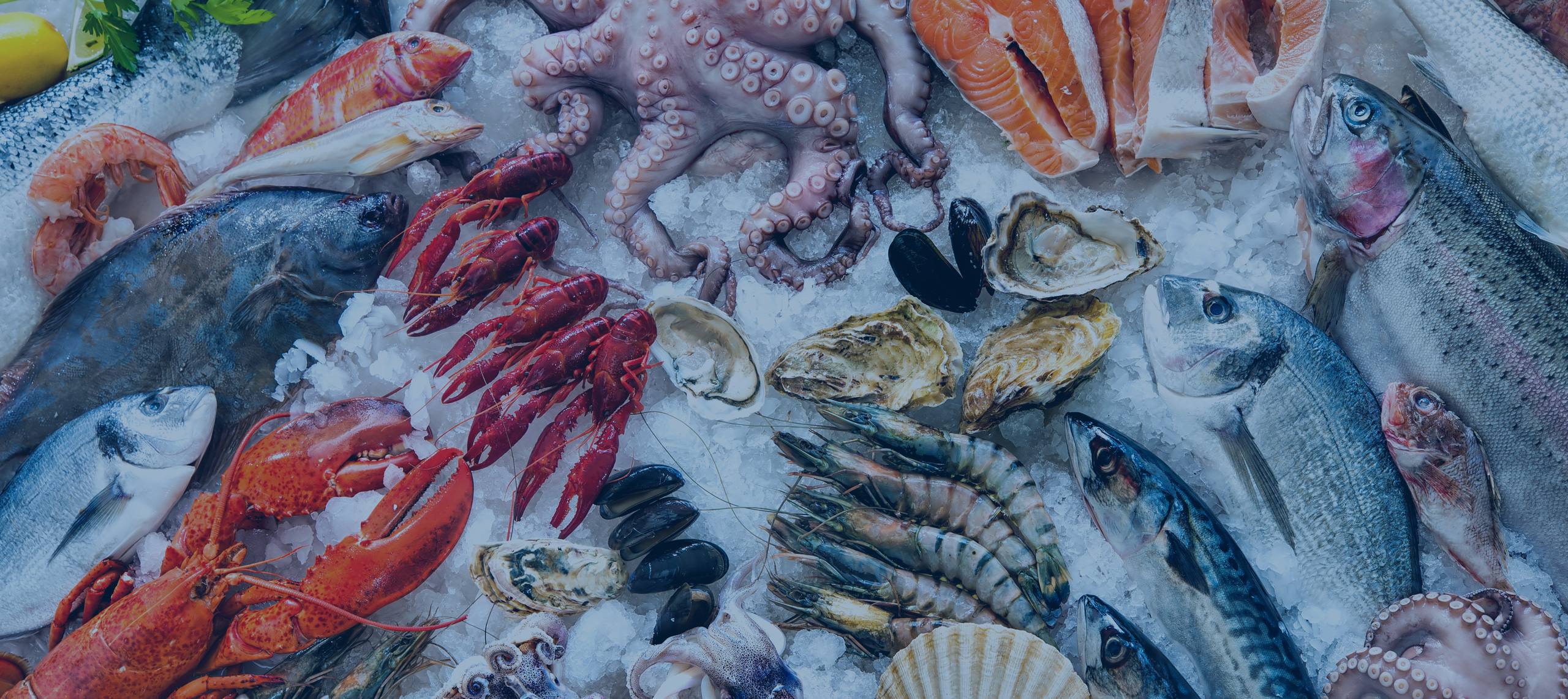 YOUR 5 BEST HOTELS TO STAY AT FOR SEAFOOD EXPO GLOBAL 2016