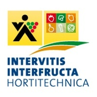 Intervitis Interfructa